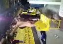 Lille maçı sonrası çıplak FENERLİ  Kuş Beyinli (: [+18]