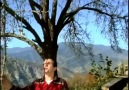 ABDURRAHMAN YAZICI -- ELMA DALI ( söz&müzik = erkan ocaklı )