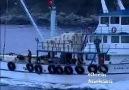 Ahşap Tekne 4/4 - Wooden Boats