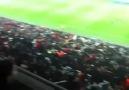 Arena'da Omuz Omuza // Beste TV //