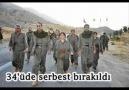 Arif Nazım-Hesap