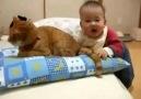 Dünyanın En Sabırlı Kedisi :)