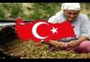 ♫ Türk olmak faşist olmaktır♫