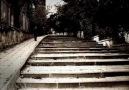 Fatih  Kısaparmak - Kırmızı  Karanfil