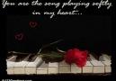 Gülşen-Adı Aşk Sebebimin (Akustik)