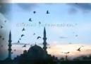 Murat Ince - Yalansız Sevdim Sen