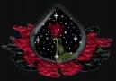 mustafa yıldızdoğan aşktandır