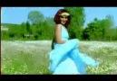 Papatya Baharı(orijinal klip)