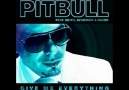 Pitbull feat Neyo, Afrojack and Nayer - Give Me Everything (Mikae