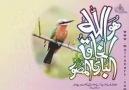 YALVARRIM RABBİM (ÇOK GÜZEL BİR İLAHİ).....!!!