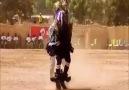 Abdullah Zengin - Birde kolbastiyi afrikakilardan gorun....