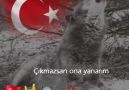 Abu Nazar -