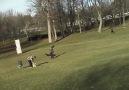 Açgözlü kartal parktaki çocuğu kaçırmaya kalktı!