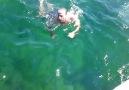 09/07/2011 adalar/sedef adası