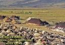 AĞLAYACAK GÖZMÜ KOYDUN - Eski Türküler Piribeyli