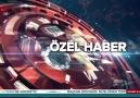 ahaber - Ankara&ağaç katliamı