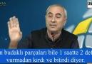 Ali Mollasalih - Dinlenesi bir hikaye...