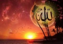 ''ALLAH'IM AFFEYLE AL BİZİDE CENNETİNE'' [ Harika ]