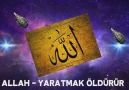 Allah - Yaratmak öldürür