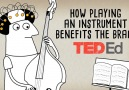 A look at the neurological wonders behind playing a musical instrument