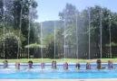 Amazing Pool Show !!