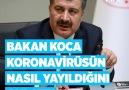 Anadolu Ajansı - koronavirüs Facebook