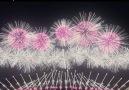 Anime Entity - Fireworks in Japan Facebook
