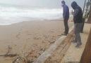 Antalyada deniz son durum