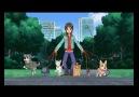 Arashi Anime