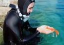 Ardık kolay kolay balık yemem - Doğa Ve Hayvan Sevgisi