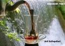Arif Arifoğulları - Bir Çay Getir Kıtlama
