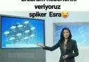 Arzu Yavuz