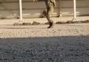 Askerliği 18 gün yaparsanız olacağı bu - İZMİR Çevirme Radar Kaza