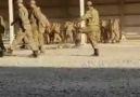 Askerliği 18 gün yaparsanız olacağı bu... - Nusaybin Haber Ajansı