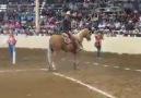 Atın ABS Fren Sistemi Var :)