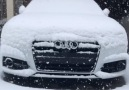 Audi Power - Guess the car model Facebook