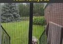 AvantajlıMagazam - Mıknatıslı Manyetik Kapı Sinekliği Facebook