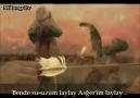 Azerice & Sinezen