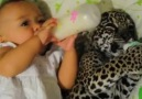 Baby And Leopard Baby