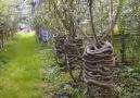 Bahçede mobilya yetiştirmek