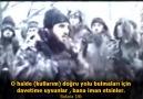 Bakara Suresi Şeyh Ahmet El Acemi