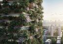 BBC News Türkçe - Geleceğin yapıları Dikey ormanlar
