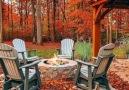 Beautiful autumn - Beautiful photo and video
