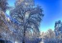Beautiful winter  landscape -  Dream landscapes in the world