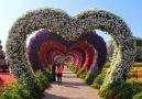 Beauty Of Planet Earth - The Beautiful Dubai Miracle Garden Facebook