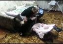 Bebeği Koruyan Kedi ☺
