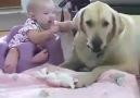 Bebişler ve Köpekler...:-)