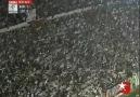Beşiktaş Seninle Ölmeye Geldik