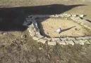 Bingöllü Fatih - Karaoğlan oyun kuşu eke dişi idman videosu