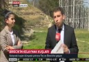 Birecikimizin Sembolü Kelaynak Kuşlarımız TRT Haberde..